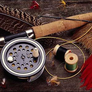 Охотничьи и рыболовные магазины Борского